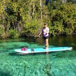 Trip with Surfit to Weeki Wachee