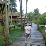 Our son loved taking walks on the raised walkway to see birds and watch for howler monkeys.