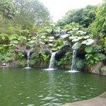 Lago de truchas