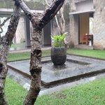 Rainy day in Maya Ubud.