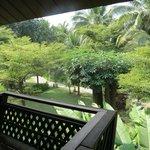 vue du balcon sur jardin
