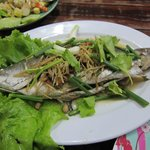 Steamed Fish - 310 baht