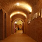 Way to the cella... Amarone ageing.