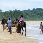Praia dos Nativos  |   Trancoso, Bahia, Brasil
