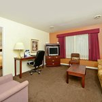 One_Bed_Suite