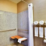 Guest Bathroom ADA Roll in Shower