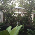 Spa inside courtyard