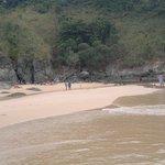spiaggia e giungla