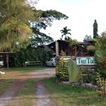 Tree Tops Lodge
