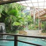 Wet pool
