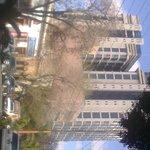 Vista desde la calle Carranza