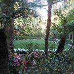 lush gardens throughout