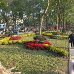 Flower gardens beside the Hoan Kiem Lake, prior to Tet Celebrations.