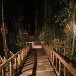 Pathway to the huts at night