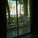 Vista del parque desde la habitación 1111