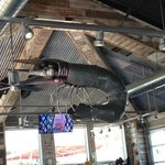 what I call a JUMBO shrimp... over the bar