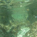 Snorkelling beach