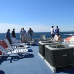 Topside viewing deck watching humpback whales!