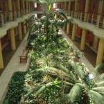 garden inside the hotel