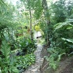 paths around the grounds