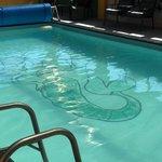 Marineland Motels Foto