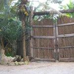 Wooden doors to the property