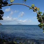 View of Saba from beach near the Golden Lemon