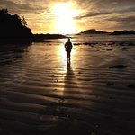 Sunsets are a must see when in Tofino as they are never the same.