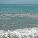 Gross! Polluted Beach