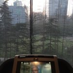View from the fitness room