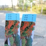 Eikan-do entrance tickets