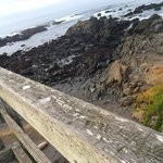 overlooking the tidal pools