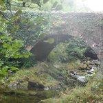Parnell's bridge