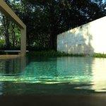 Pavillion Pool