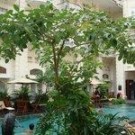 The Phonenix Hotel Yogyakarta