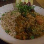 Vegan curry with organic rice