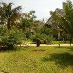 Il giardino e i bungalow.