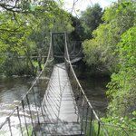 Suspension bridges to access rooms