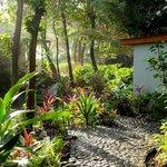 PBH Gardens