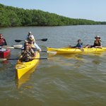 Boat Assisted Kayak Eco Tour