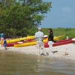 Boat Assisted Kayak Eco Tour - On a remote beach