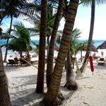 view from beachfront cabana