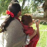Touring with Nora: Nora and the schoolchild guide at Tule tree