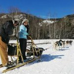 Dogsledding down Rt 113 (closed in winter)