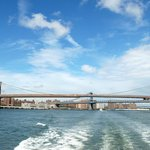 City Sightseeing NY Cruises: Brooklyn Bridge