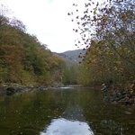 Beautiful water w/big trout