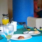 Ospiti a colazione