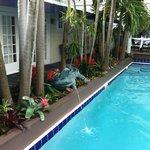 pool Jan 2014