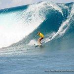 Surfing Haapiti
