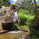 Piscina natural com pequena queda d'agua super relaxante!